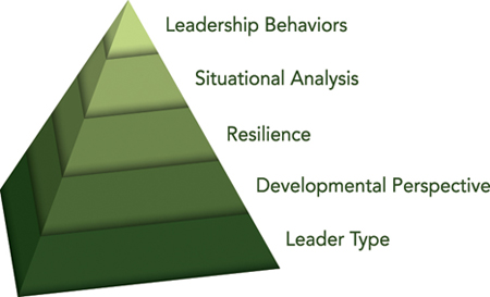 Innovative Leadership: A Thoughtful Model and (free!) Online Self-Assessment from Metcalf Associates